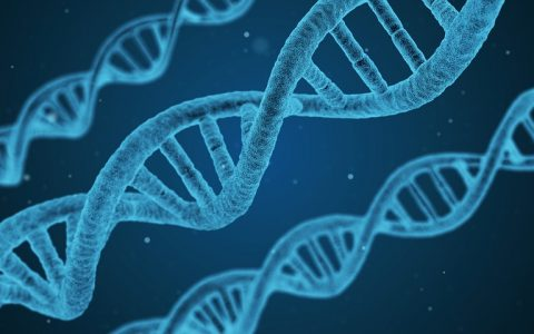 Terapia Orthokine Sevilla: Peter Wehling prevé un futuro optimista para la terapia génica